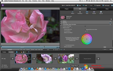 સ્ક્રીનશૉટ Adobe Premiere Elements Windows 7